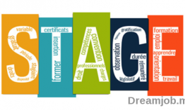 Dreamjob Coaching Emploi : 8 Conseils pour réussir son stage