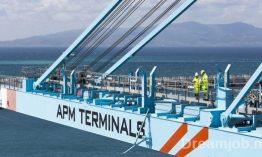 شركة APM TERMINALS : تعلن حملة لتلقي طلبات التوظيف في كل التخصصات بميناء ميد 2 – طنجة
