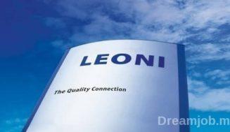 Leoni recrute 2 Profils Ingénieurs Qualité et Technicien Méthodes et 2 Stagiaires Ingénieurs Casablanca) – توظيف عدة مناصب