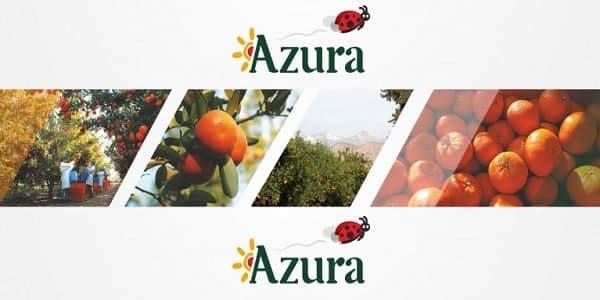 Azura Maroc Emploi et Recrutement - Dreamjob.ma