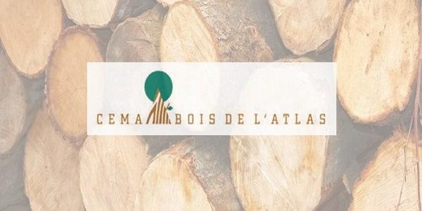 Cema bois de l 39 atlas recrute 6 profils casablanca dreamjob ma - Travail du bois pour debutant ...