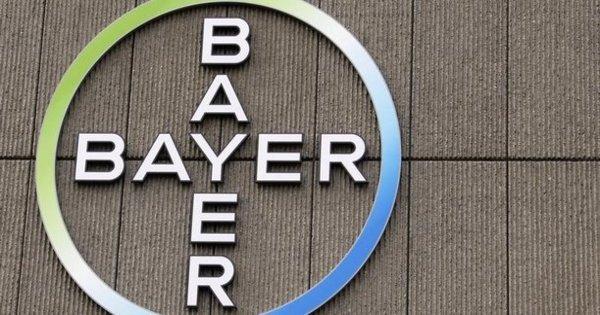 Bayer Emploi et Recrutement - Dreamjob.ma