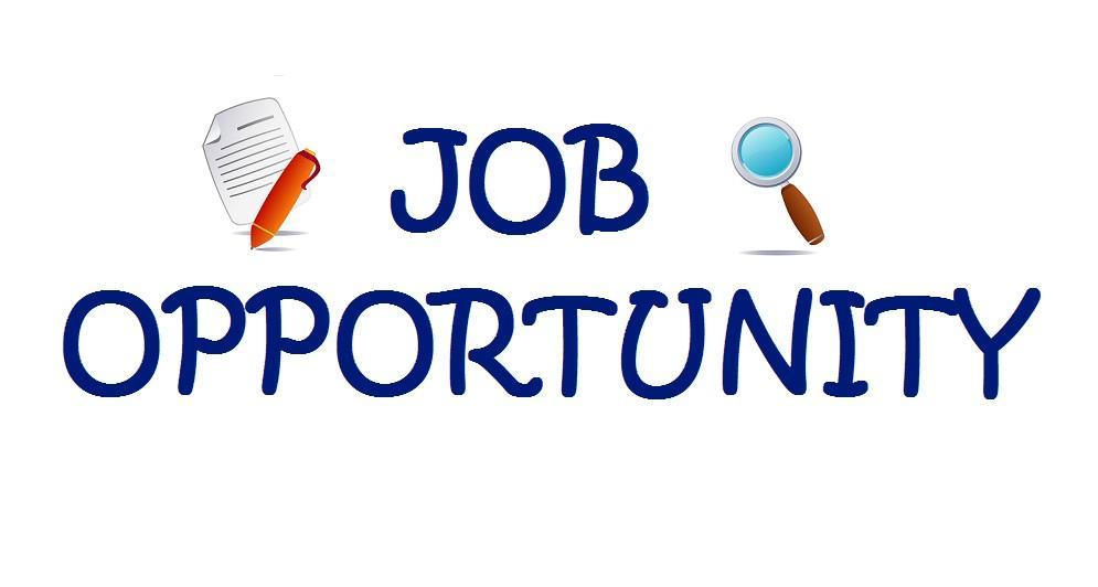30 offres d u0026 39 emploi  ratp dev - label u0026 39 vie - altran