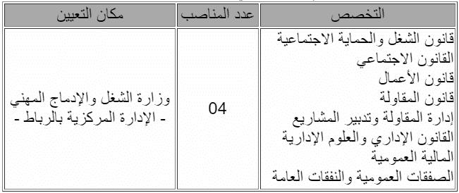 Emploi 1 Concours Ministère du Travail et de l'Insertion Professionnelle (6 Postes)