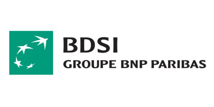 BDSI Emploi Recrutement