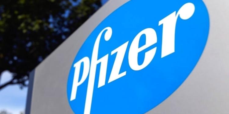 Pfizer Emploi Recrutement
