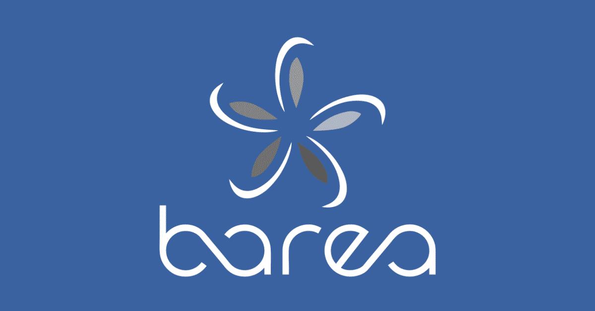 Barea Group Emploi Recrutement